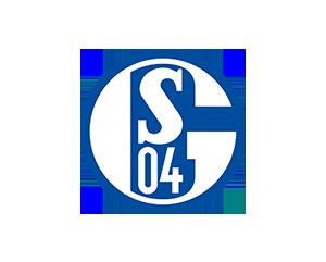 https://wp.svhessler06.de/wp-content/uploads/2019/02/schalke_sky.png